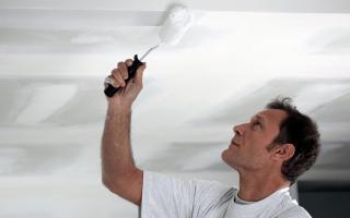 Водоэмульсионная краска для стен и потолков «Экодом»