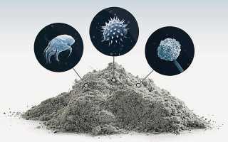 Как избавиться от пыли в квартире и очистить воздух за 5 | ЭРОС