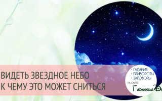Восхитительное «Звездное небо» со знаками зодиака