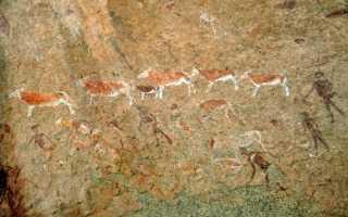 Минеральные краски и их виды
